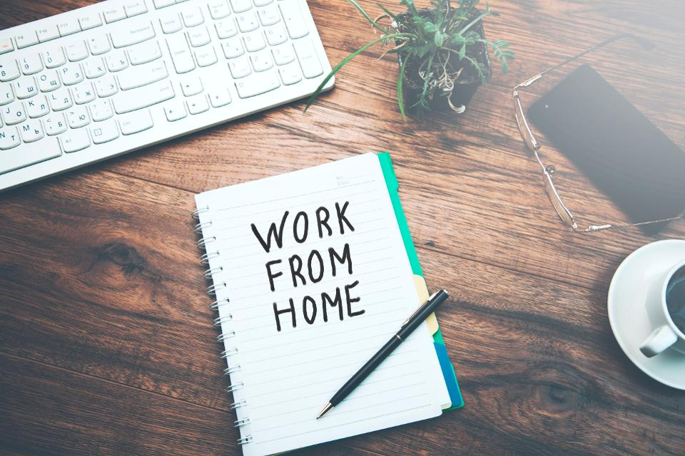 What instructions or advice should the Project owner take into Consideration before hiring a Freelancer?